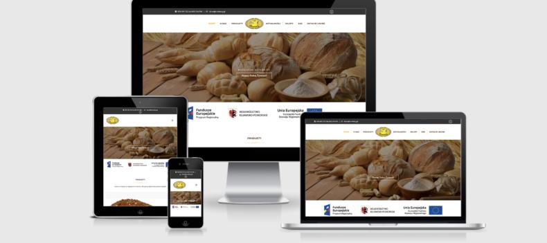 Realizacja projektu strony internetowej dla ruminscy.pl